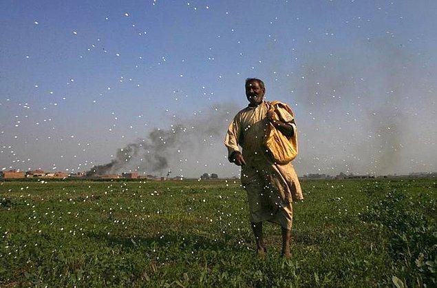 13. Pakistanlı bu adam da, merasında ot bitsin diye havaya böcek ilacı saçıyor ve ortaya bu görüntü çıkıyor.