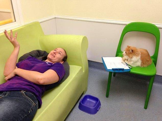 """20. """"Hayvan kurtarma merkezlerinde çalışmanın bazen de terapi özellikleri vardır."""""""