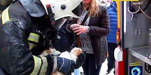 Çıkan Yangında Kalbi Duran Kediyi Kalp Masajıyla Hayata Döndüren İtfaiye Ekibi