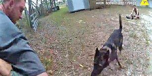 2 Şüpheliyi ve 1 Köpeği Kontrol Eden Amerikan Polisinin Aksiyon Filmlerini Aratmayan Görüntüleri