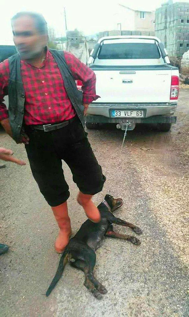 10. Çocuklarımız bu adama emanet - Aracın arkasına bağladığı köpeği sürükleyerek öldüren sınıf öğretmeni