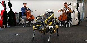 Müzik Duyunca Dans Edebilen Robot: ANYmal