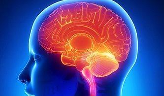 Sağlığın Temeli Beslenmedir! Peki Kötü Beslendiğimizde Organlarımızın Başına Neler Gelir?