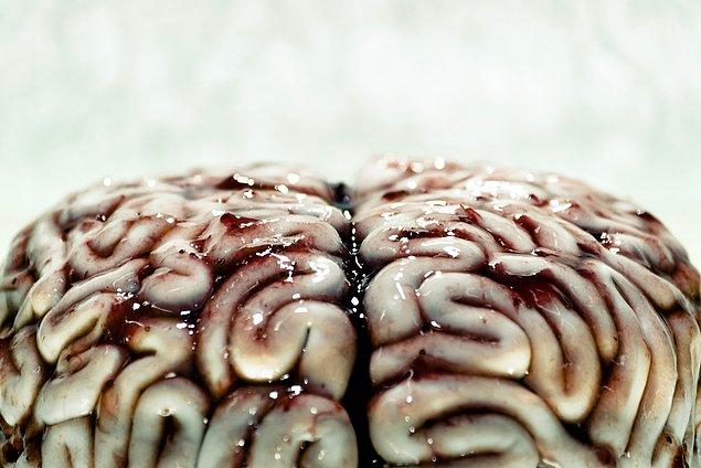 16. Her dakika beynimizde 1 litreye yakın kan dolaşır.