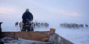Tatilini, Dünyanın En Zor Şartları Altında Yaşamaya Çalışan 'Ren Geyiği Çobanları'yla Geçiren Genç