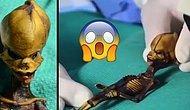 Uzaylı mı İnsan mı? DNA Bilimcileri Şilili Uzaylı Bebeğin Sırrını Sonunda Çözdü!