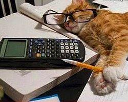 """Sınavdan bir gün önce çalışırken gelen """"keşke daha önce çalışmaya başlasaydım"""" duygusu."""