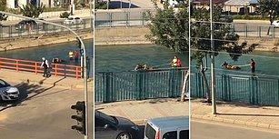 Adana'da Sıradan Bir Gün: Su Kanalında At Arabasıyla Gezintiye Çıkan Adamlar