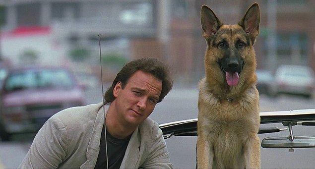 13. Köpeklerin tam bir zeka küpü olduğunu bizlere bir kere daha gösteren K9