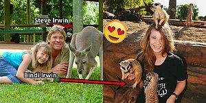 Steve Irwin'in Mirasını Yaşatmakta Kararlı, En Az Onun Kadar Cesur ve Hayvansever Kızı: Bindi Irwin