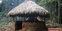 Doğada Tek Başına Yaşamanın Şifrelerini Çözen Adamdan Kulübe Yapımı