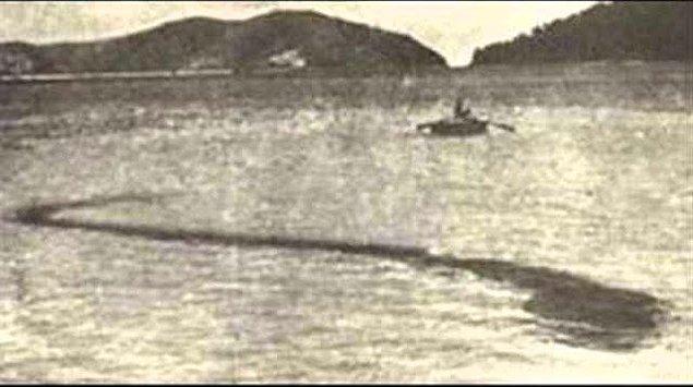 7. 1924 yılında Hook adası açıklarında çekilen bu fotoğrafta devasa bir deniz canlısı görülüyor. Canlının ne olduğuna dair sır aydınlatılamasa da fotoğrafı çeken Robert Le Serrec çok saldırgan olduğunu söylemişti.