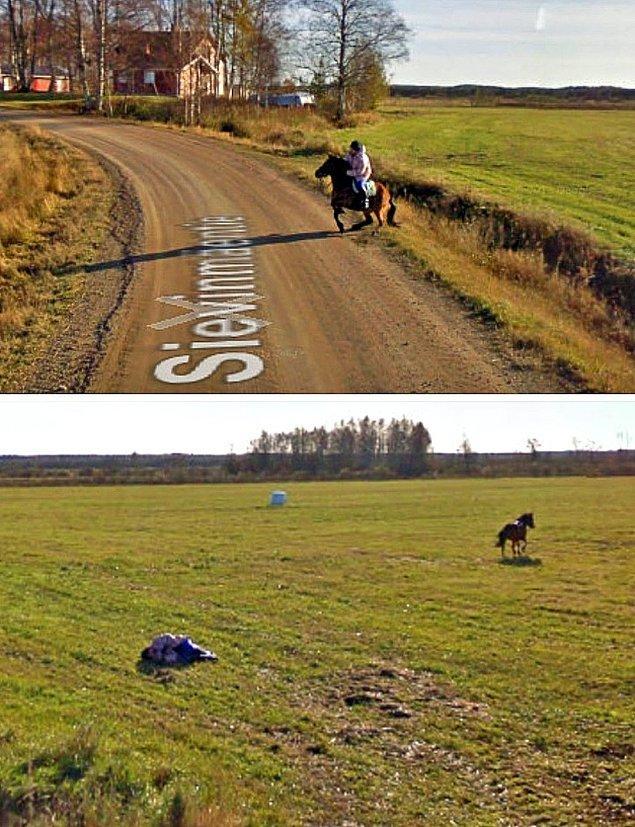 16. Google Sokak Görünümü bir at ile karşılaşırsa ne olur?