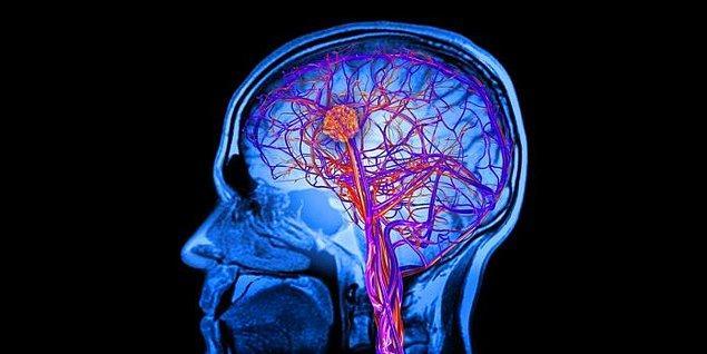 'Beynin en önemli gıdası glikoz.'