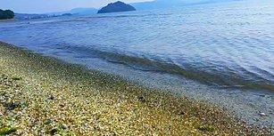Bu Plajda Cam Var! Japonya'nın Renkli Camlarla Kaplı Muhteşem Plajı