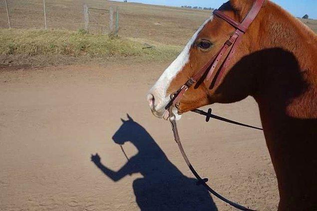 9. Selfie.