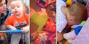 Olur Olmadık Yerlerde Uyuya Kalan Çocukların Sevimli Anları