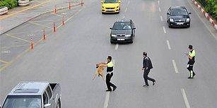 Yolun Karşısına Geçemeyen Köpeğe Yardım Eden Trafik Polisi