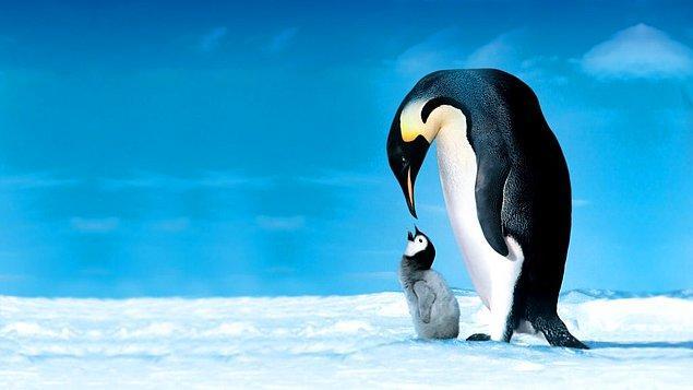 36. Bir canına susamışlık da vahşi yaşam belgeselleri ile ün yapan Luc Jacquet'tan. 'İmparatorun Yolculuğu'nda Antarktika'nın buz çöllerinde, dünyanın barınılması en güç bölgesinde İmparator Penguenler'in peşine düştüğünü görüyoruz.