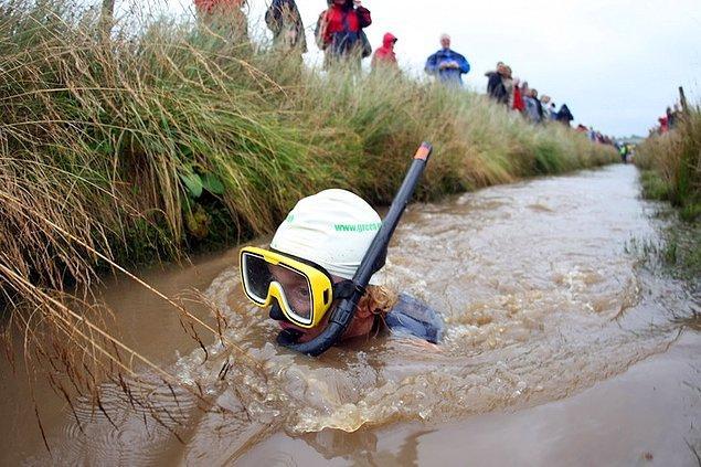 6. Şnorkelle bataklık dalışı