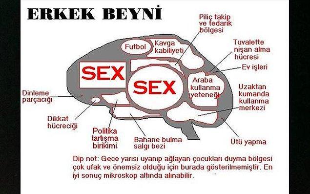 10. Gün içerisinde seksten başka şeyler düşünülünce beyinde meydana gelen tepkimeleri ölçme ve değerlendirme.