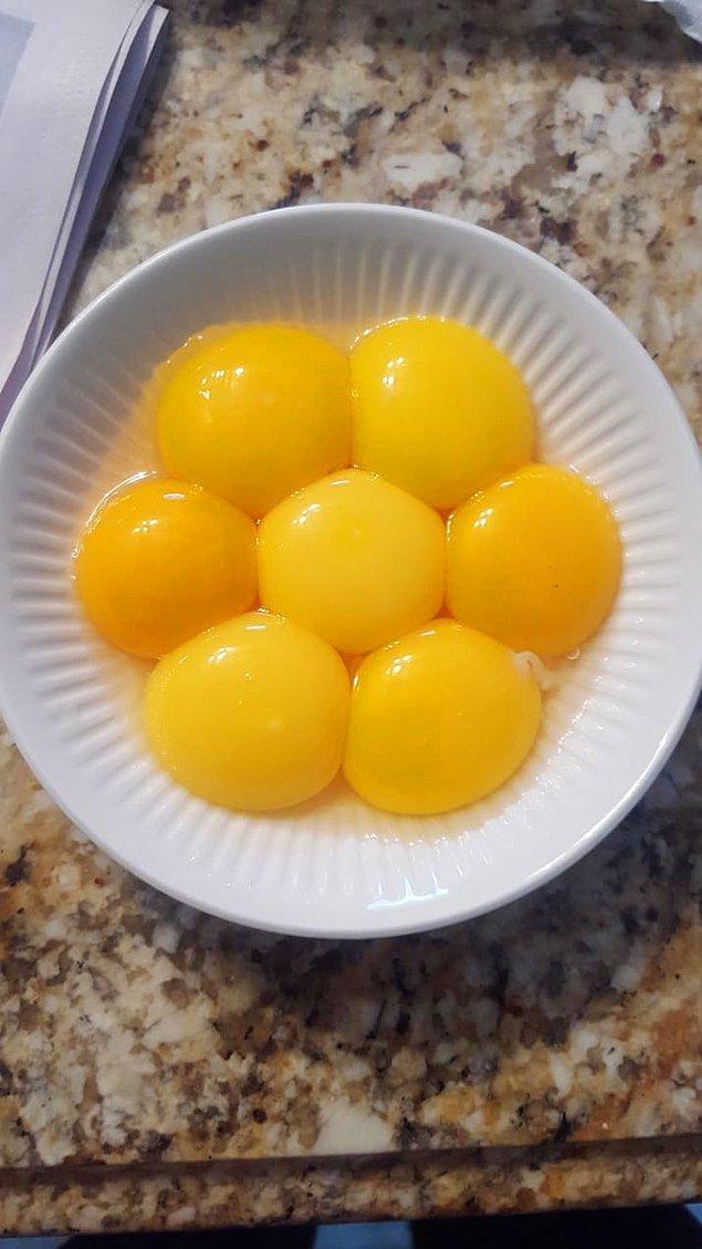 7. Yumurtaların sarısından yapılan papatya :)