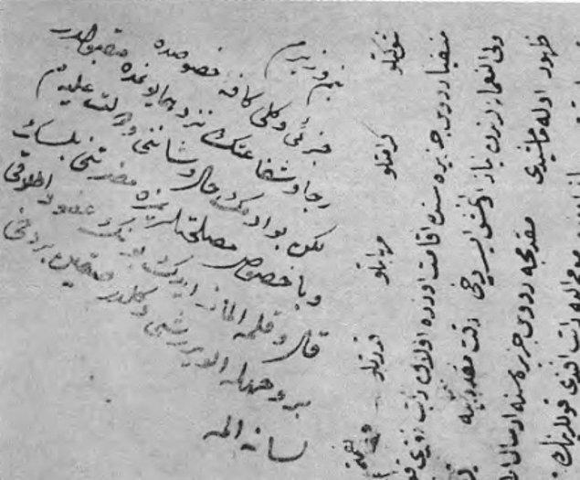 Devlet ricalinden Rodos'a sürülen bir zat hakkında idam emri çıkmıştır. Fakat Sadrazam Efendi bu zatın affedilip edilemeyeceğini bir kez daha padişaha sormak ister.