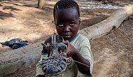 Farklı Gelir Seviyesindeki Çocuklardan En Sevdikleri Oyuncaklarını Göstermeleri İstenirse...