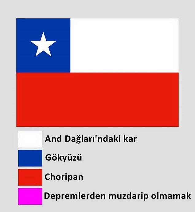 15. Şili