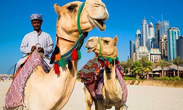 9. Dubai, Birleşik Arap Emirlikleri - 3.447 $