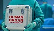 Türkiye'de Kurulması Planlanan 'Organ Takas Merkezi' Her Yıl 5 Bin Kişinin Hayatını Kurtaracak