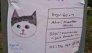 Gözümüz Aydın! Robot Resmiyle Aranan Kedi 'Benekli' Bulundu