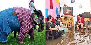 Hindistan'ın Hint Dizilerinden Bile İlginç Olduğunu Gösteren 21 Akıl Sır Erdiremeyeceğiniz Fotoğraf