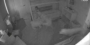 Gecenin Bir Vakti Bebeği Uyandırıp Odadan Kaçmasını Sağlayan Kapıyı Açan Suç Ortakları