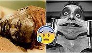 Şaka Değil Gerçek! Öldükten Sonra Vücudumuzda Gerçekleşen 25 Dudak Uçuklatan Değişim