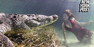 Su Altında Timsahlarla Fotoğraf Çektiren Yürek Yemiş Kadın