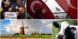 İnekler 'Sınır Dışı' Edilmiş, Portakallar Sıkılmıştı: Türkiye - Hollanda Teması ve Karşılıklı Normalleşme Adımları