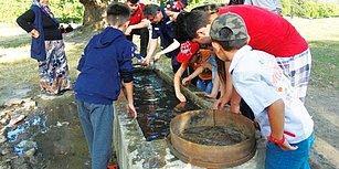 Çevre Kirliliğinin Geldiği Son Nokta! Vatandaşlar Can Çekişen Balıkları Yıkayarak Hayata Döndürmeye Çalıştı
