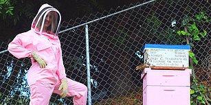Kendini Doğaya Adayıp Organik Bal Üreticisi Olmak İsteyen Kadının Pek de İyi Gitmeyen Girişimcilik Hikayesi