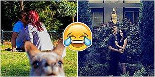 Fotoğraflara Gizlice Dahil Olarak Rol Çalmayı Başaranların Birbirinden Komik 20 Fotoğrafı
