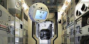 Biz Sınavlardaki Matematik Ortalamamızı 5'in Üzerine Çıkarmaya Kafa Yorarken Teknoloji Dünyasında Geçtiğimiz Ay Neler Oldu?