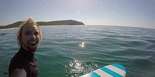Sörf Tahtasıyla Açılırken Balinaların Arasında Kalan Adam