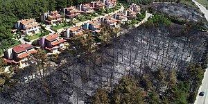 Soruşturma Başlatıldı: Mudanya'daki 'Düzenli Yangının' Fotoğrafı ve Sabotaj İddiaları
