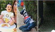 İlk Görüşte İnsanı Boncuk Boncuk Terletmek İçin Çekildiği Belli Olan 19 Fotoğraf