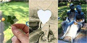 Hayata Bakışınız Değişecek! Her Yaştan ve Cinsiyetten İnsanın Kalbine Dokunup İçine İşleyecek 21 Görüntü