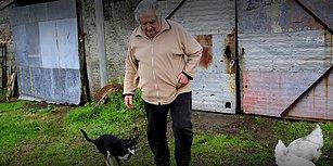 Köpeği Öldüğünde Karar Vermiş: 'Saraysız Başkan' Jose Mujica, Senatörlük Görevinden İstifa Etti