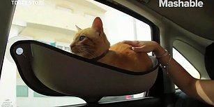 Kedi Dostlarımızın Araç Seyahatlerinde Rahat Etmesi İçin Düşünülmüş Muhteşem Hamak