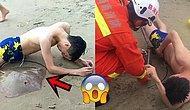 Çin'de Sahilde Yüzerken Cinsel Organına Vatoz Yapışan Talihsiz Turist
