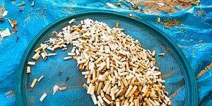 Günümüzün Büyük Çevresel Sorunu Okyanus Kirliliğinin En Büyük Sebebinin Sigara İzmaritleri Olduğu Ortaya Çıktı!