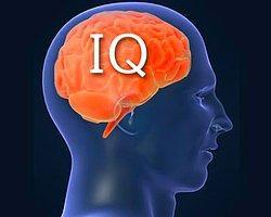 Zeka Denince Hemen IQ'dan Bahsedenler, Çoklu Zeka Modeli Size Bildiklerinizi Unutturacak!